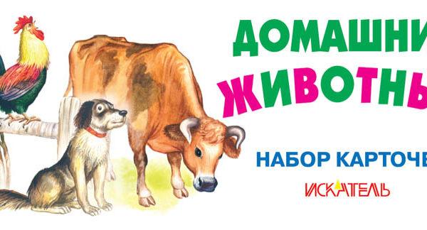 Домашние животные_